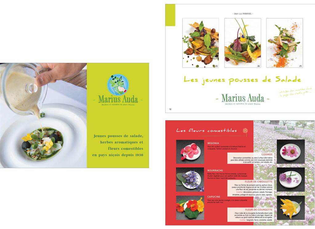 Plaquettes, cartes de visites et charte graphique d'entreprise - Frank Bildstein Designer